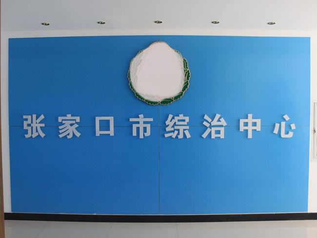 yabo55雪亮yabo166市综治中心